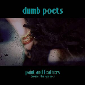 Dumb Poets: Paint & Feathers – video exclusive and track premiere