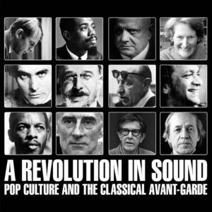 Various – A Revolution In Sound – album review